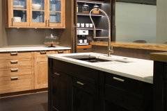 Rutt-ADDS2017-Morgan-Galley-Sink